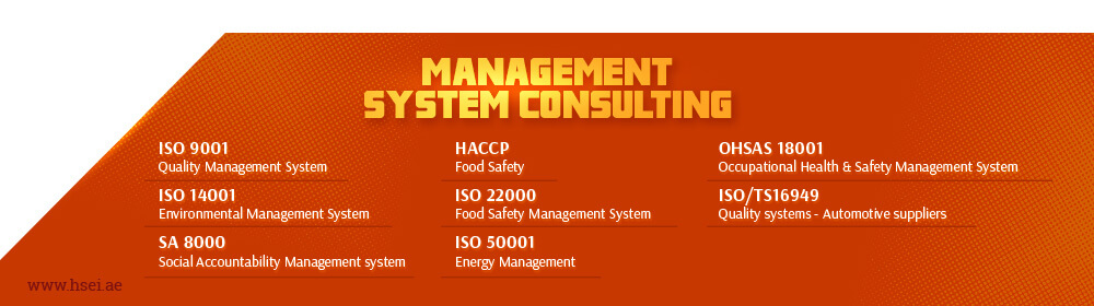 Management System Consulting